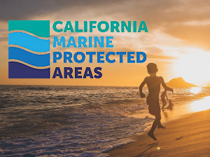 Media Relations: Marine Life Protection Act Initiative